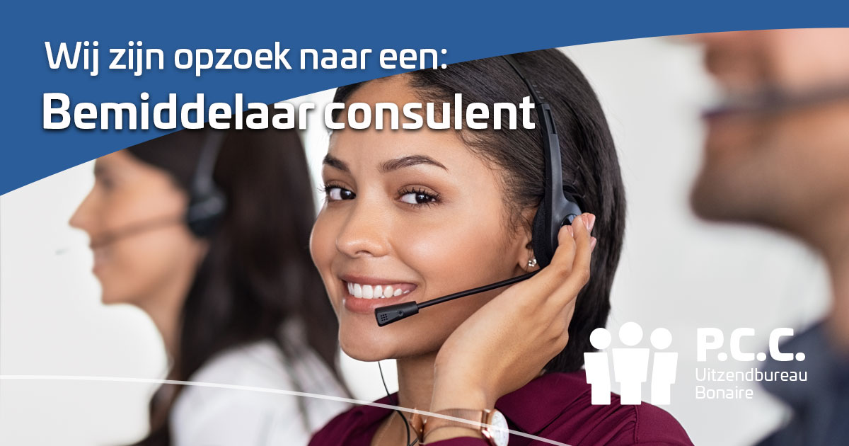 Bemiddelaar consulent
